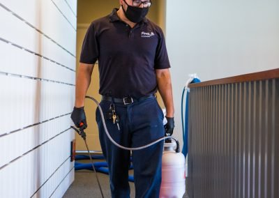carpet cleaning spot cleaning Carson, California