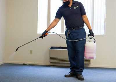 spraying carpet cleaning solution
